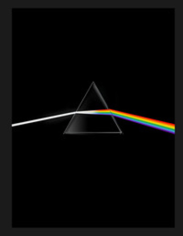 Pink Floyd. Their mortal remains. Ediz. a colori - A. Monti pdf epub