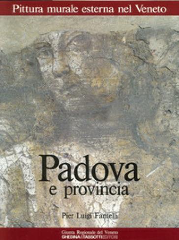 Pittura murale esterna nel Veneto. 1.Padova e provincia - Pierluigi Fantelli  