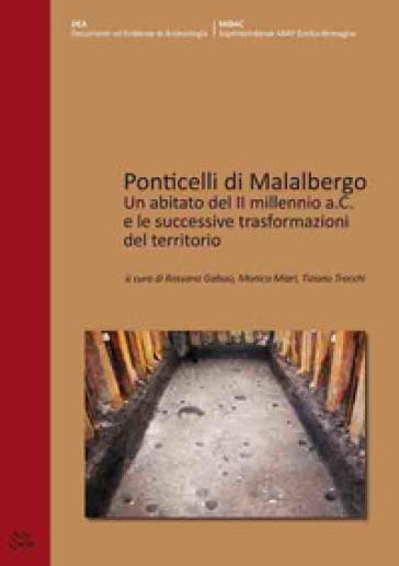 Ponticelli di Malalbergo. Un abitato del II millennio a.C. e le successive trasformazioni del territorio - R. Gabusi | Kritjur.org