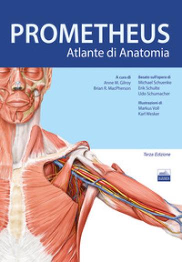 Prometheus. Altante di anatomia - Anne M. Gilroy | Jonathanterrington.com