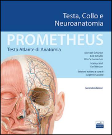 Prometheus. Atlante di anatomia. Testa, collo e neuroanatomia