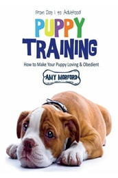 Puppy Training: From Day 1 to Adulthood