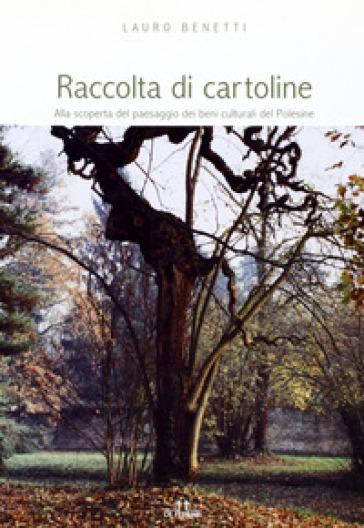 Raccolta di cartoline. Alla scoperta del paesaggio dei beni culturali del Polesine - Lauro Benetti |