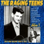 Raging teens vol.1