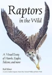 Raptors In The Wild