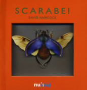 Scarabei. Libro pop-up