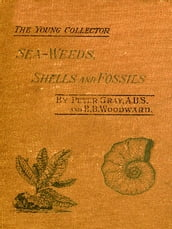 Sea-Weeds, Shells and Fossils [Illustrated]