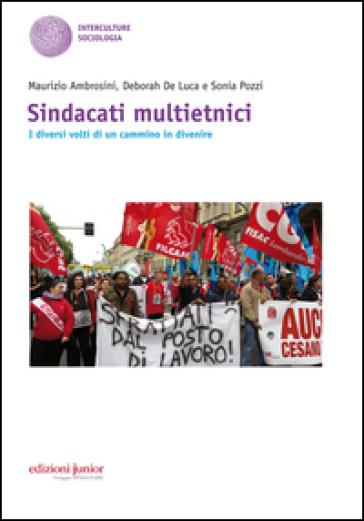 Sindacati multietnici. I diversi volti di un cammino in divenire - Maurizio Ambrosini | Kritjur.org