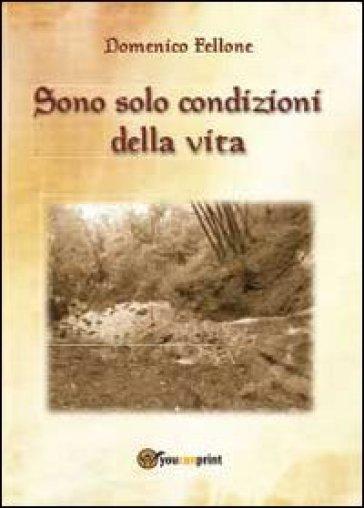 Sono solo condizioni della vita - Domenico Fellone |
