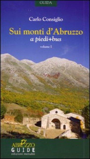 Sui monti d'Abruzzo a piedi + bus - Carlo Consiglio |