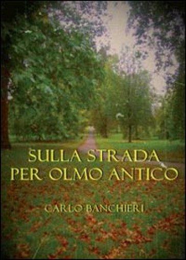 Sulla strada per Olmo Antico - Carlo Banchieri | Kritjur.org