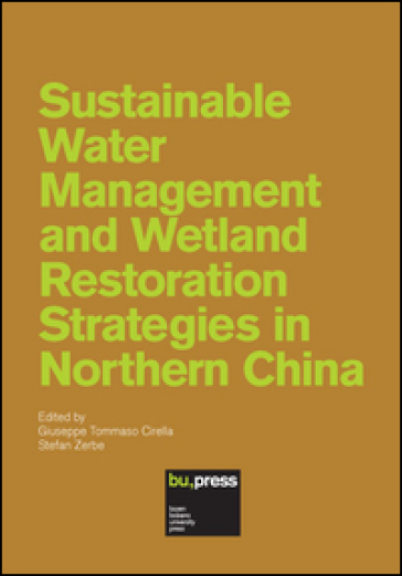 Sustainable water management and wetland restoration strategies in northern China