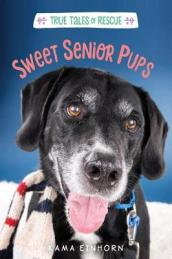 Sweet Senior Pups
