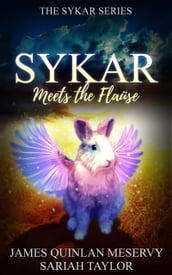 Sykar Meets the Flause