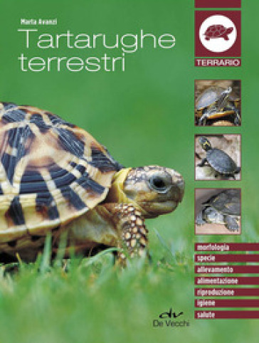 Tartarughe terrestri - Marta Avanzi pdf epub