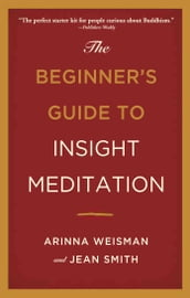 The Beginner s Guide to Insight Meditation