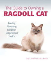 The Guide to Owning a Ragdoll Cat