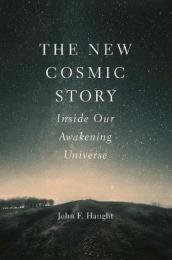 The New Cosmic Story