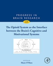 The Opioid System as the Interface between the Brain s Cognitive and Motivational Systems