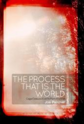 The Process That is the World