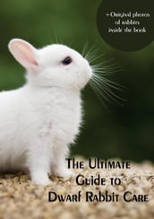 The Ultimate Guide to Dwarf Rabbit Care