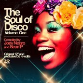 The soul of disco vol. 1