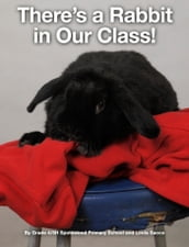 There s a Rabbit in Our Class!