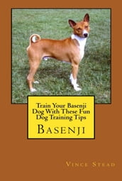 Train Your Basenji Dog With These Fun Dog Training Tips