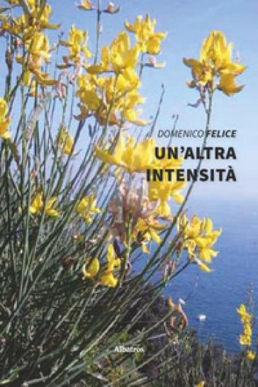 Un'altra intensità - Domenico Felice |