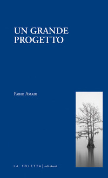 Un grande progetto - Fabio Amadi |