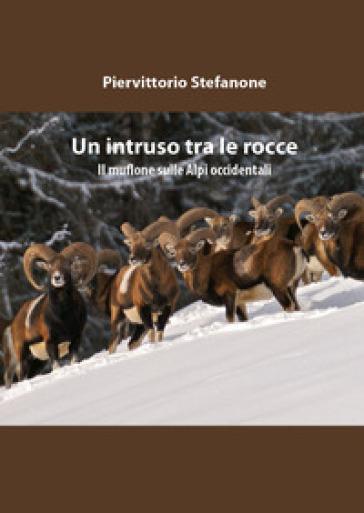 Un intruso tra le rocce - Piervittorio Stefanone pdf epub