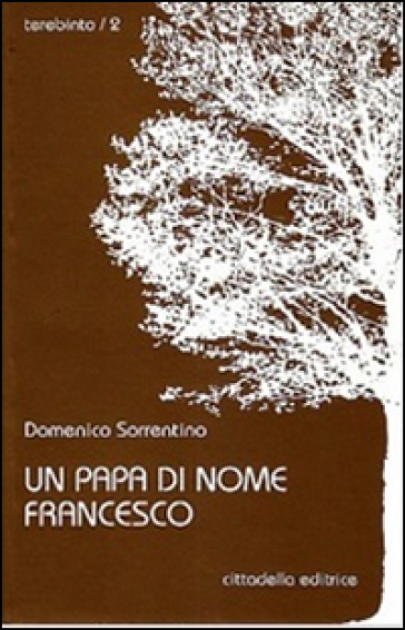 Un papa di nome Francesco - Domenico Sorrentino |