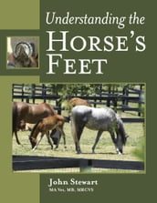 Understanding the Horse s Feet