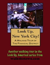 A Walking Tour of New York City s Financial District