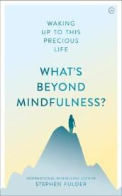What s Beyond Mindfulness?