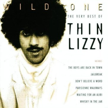 Wild one (the very best of