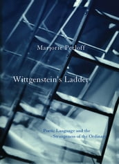 Wittgenstein s Ladder