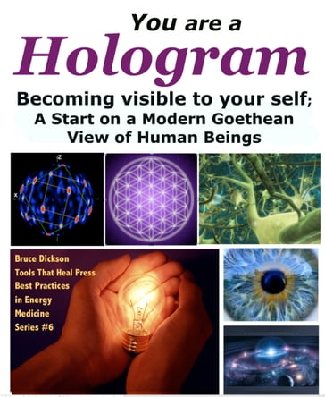 You Are a Hologram Becoming Visible to Your Self; A Start on a Modern Goethean View of Human Beings