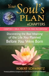 Your Soul s Plan eChapters - Chapter 5: Drug Addiction and Alcoholism