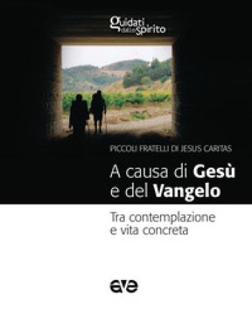 A causa di Gesù e del Vangelo. Tra contemplazione e vita concreta - Gabriele Faraghini |