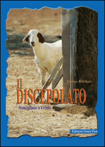Il discepolato. Somigliare a Cristo -  pdf epub