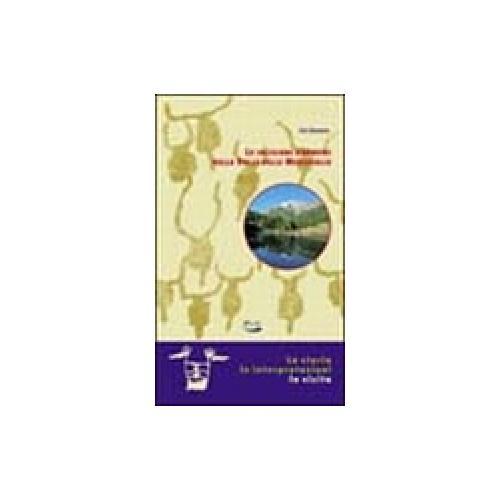 Le incisioni rupestri della valle delle Meraviglie. La storia, le interpretazion