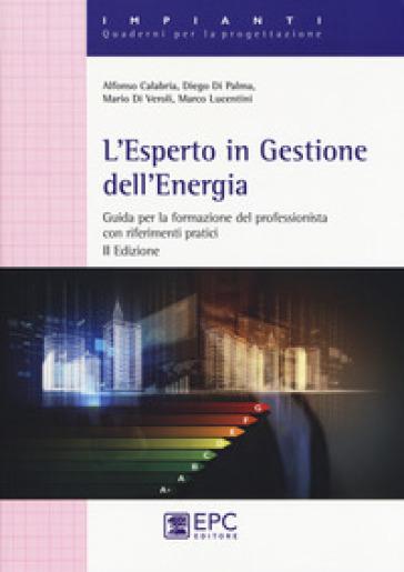 L'esperto in gestione dell'energia. Guida per la formazionre del professionista con riferimenti pratici in allegato - Alfonso Calabria |