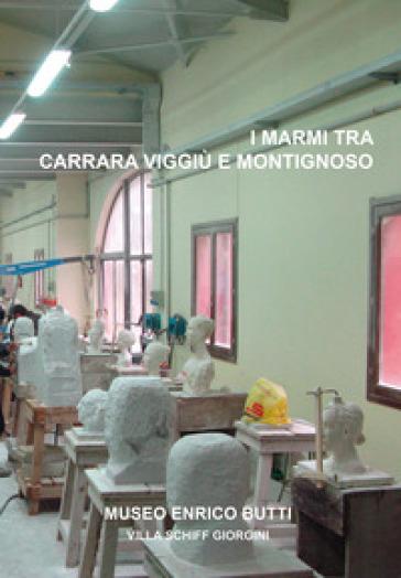 I marmi tra Carrara, Viggiù e Montignoso. La scultura dell'Accademia di Belle Arti di Carrara - I. Campagna |