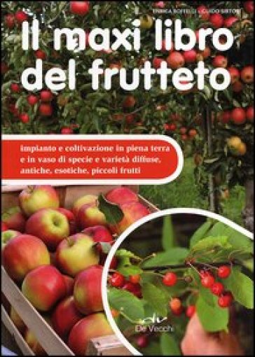 Il maxi libro del frutteto. Coltivazione in piena terra e in vaso - Enrica Boffelli | Rochesterscifianimecon.com