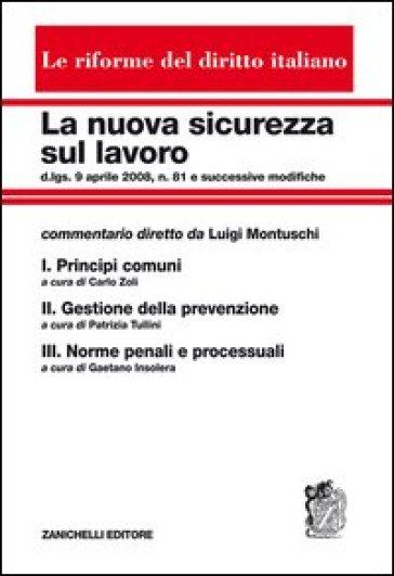 La nuova sicurezza sul lavoro: Principi comuni-Gestione della prevenzione-Norme penali e processuali. Cofanetto