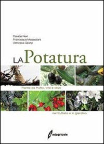 La potatura piante da frutto vite e olivo nel frutteto for Potatura piante da frutto
