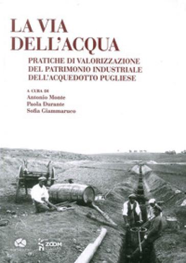 La via dell'acqua. Pratiche di valorizzazione del patrimonio industriale dell'acquedotto pugliese - A. Monte   Kritjur.org